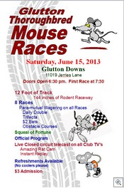 Mousr Races 061513
