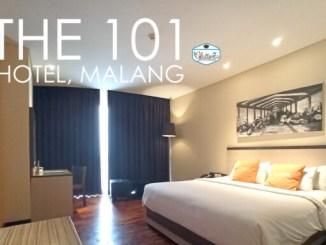 The 101 malang