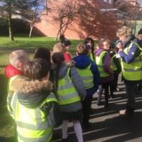 Pedestrian Training in Year 3