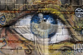 Jesus in Eye