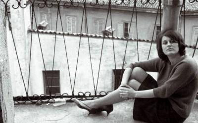 Vestivamo rosa shocking Libertà di parole, immagini e musiche nella Modena degli anni Sessanta