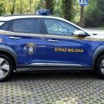 Sprawozdanie Straży Miejskiej 21.06. – 20.08.2020
