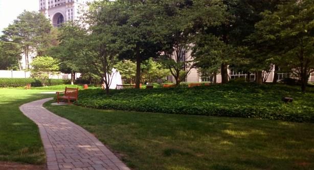 Midtown Atlanta, 4 June 2014, #1