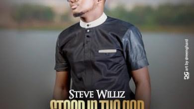 Photo of Steve Williz – Stood In The Gap Lyrics