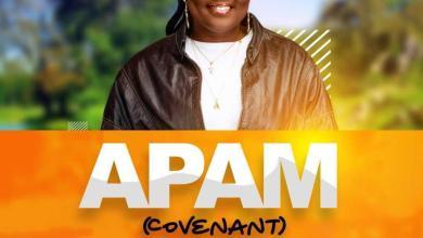 Photo of Nana Akosua – Apam (Mp3 Download)