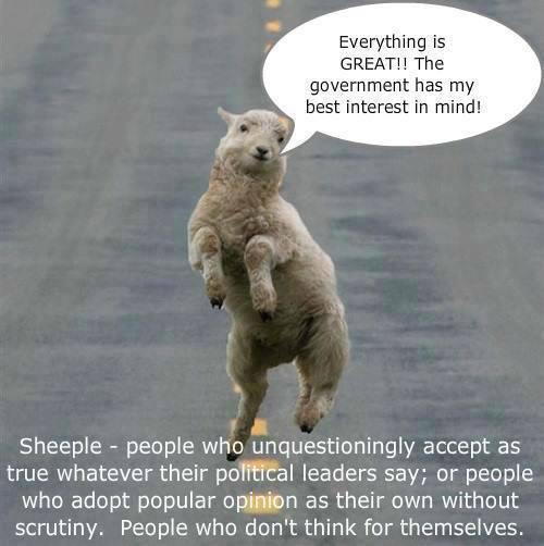 THE SHEEP!
