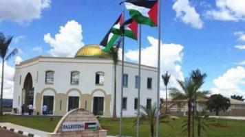 Viva Brazil & Palestine