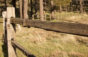 fence_in_the_country