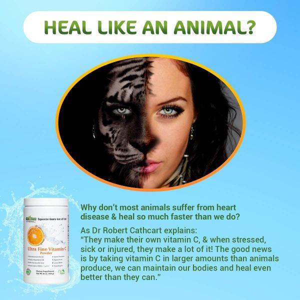 Quali-C Ultra Fine Vitamin C - Heal Like an Animal
