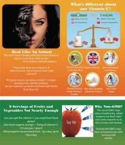 GMO Free Vitamin C Flyer p2