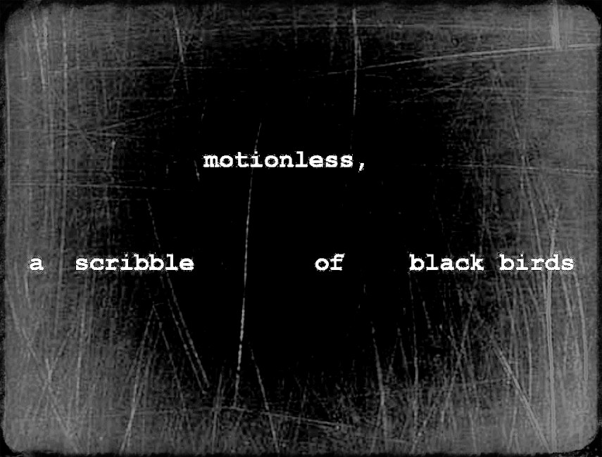 motionless _ Shloka