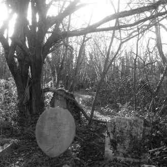 Old Cemetery 8