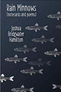 Rain Minnows Book Cover