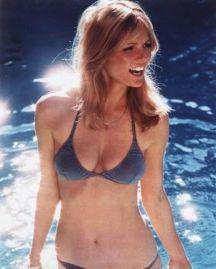Cheryl Tiegs was America's first supermodel (Pin It)