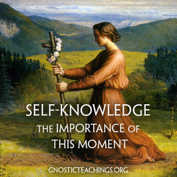 self-knowledge250