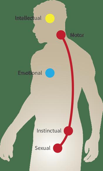 centers-male-2015