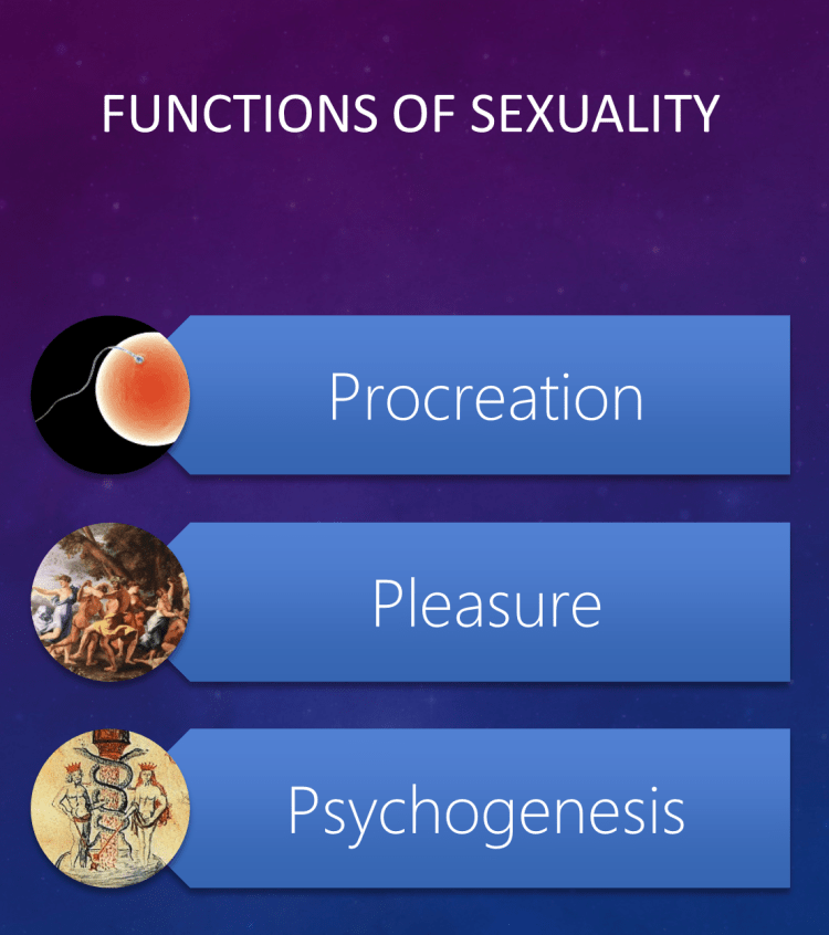 mots_05_functions_of_sexuality.png