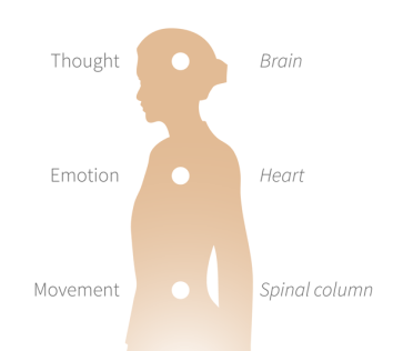 thought-emotion-movement2