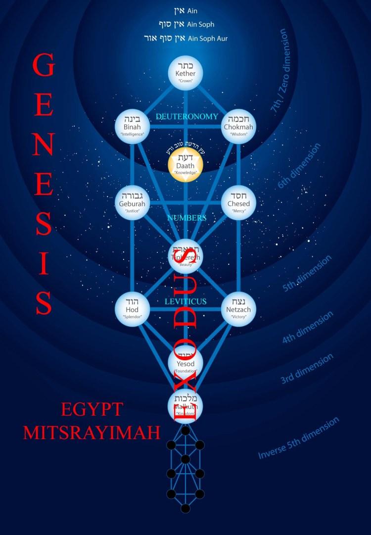 tree-of-life-five-books