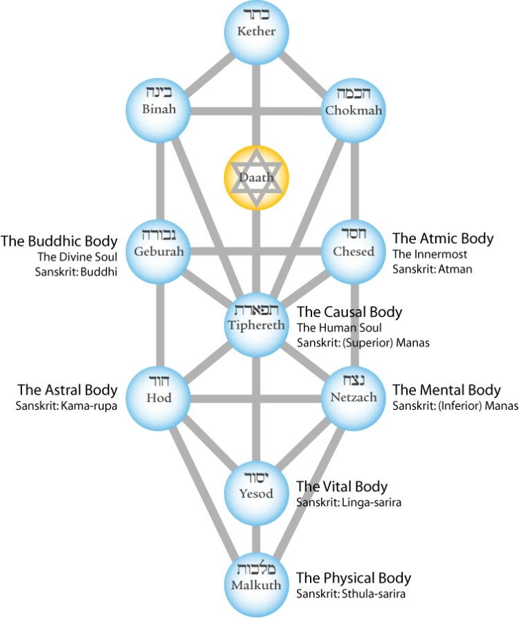 tree-of-life-seven-bodies