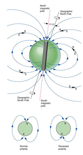 magnetic-pole