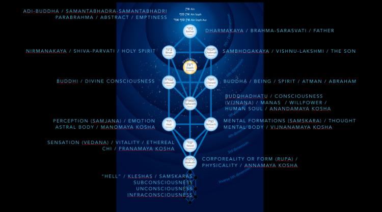 tree-of-life-psychology