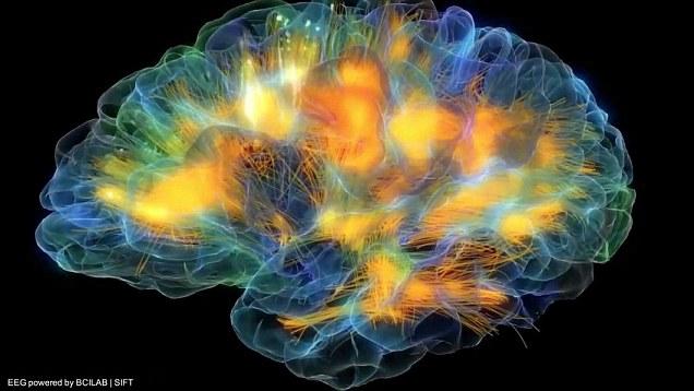 Brain firing 3 The Two Golden Cherubim in Our Brains