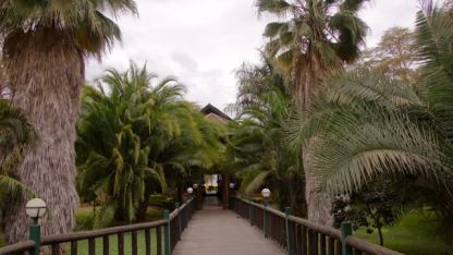 Boardwalk from the Lodge