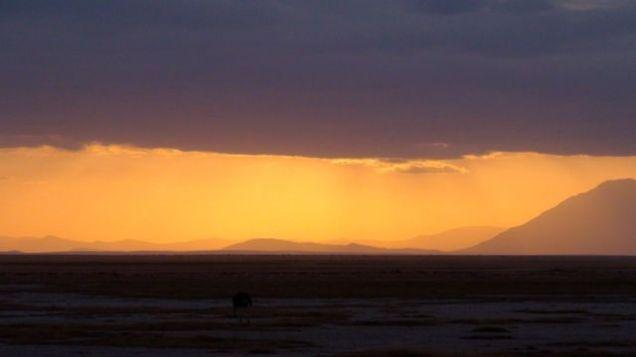 A distance sunset