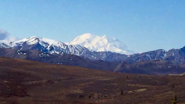 150516 Denali National Park
