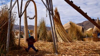 This little guy enjoys a swing in the reeds.