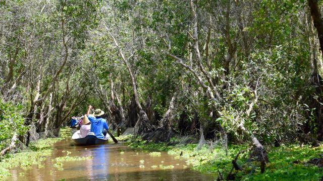 160915 Tra Su Bird Forest and into Cambodia
