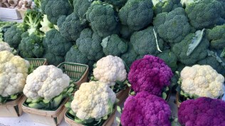 Green, white and purple broccoli.