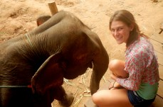 Elephants are her favorite