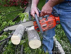 Chain saw for rent at Effingham Builder Supply's Rental Center