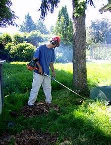 String Trimmer Rental to keep your landscaping up to your standards
