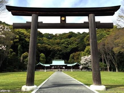 Shrine,Jinjya,Gokoku,Shizuoka,Japan,Sakura,sightseeing,triptojapan,japantrip,go2japan,forest,peaceful,woods,