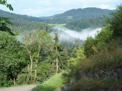 Eingebettet im schönen Schwarzwald