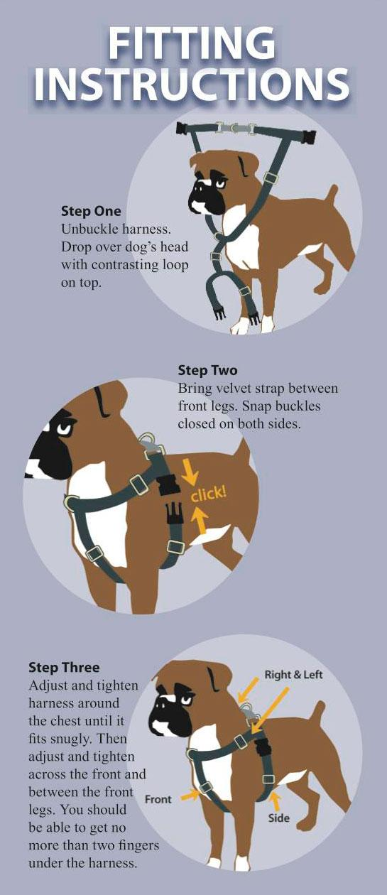 The Best Dog Harness For Running In
