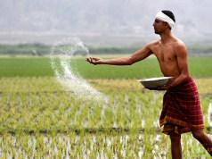 Android Apps for Agriculture in India
