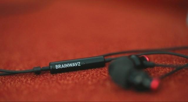 Brainwavz Delta Review