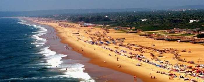 candolim beach 1