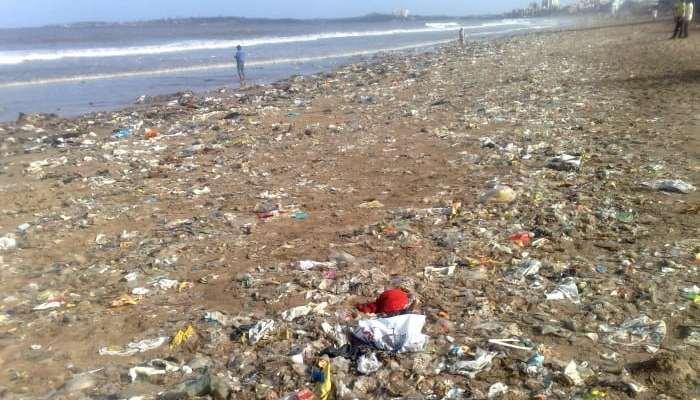 goa-beach-pollution
