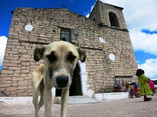 Adventures in Creel: Off the Beaten Track in Mexico