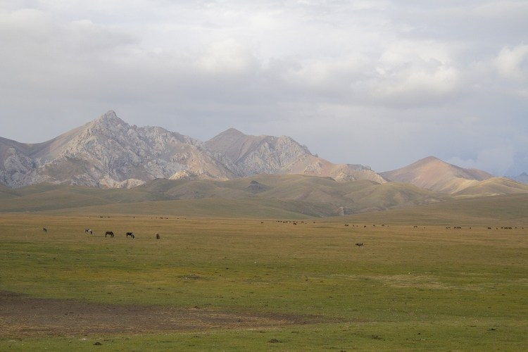 The mountains of Son Kol.