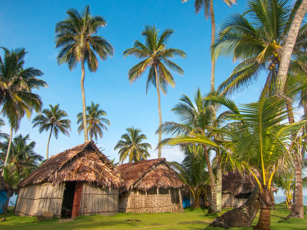 Thatched-roof bungalows