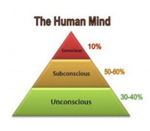 Human Mind by themindunleashed.org
