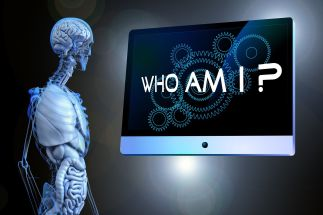 Who am I by Geralt CC0 Public Domain from Pixabay