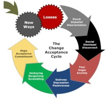 Change and acceptance cycle