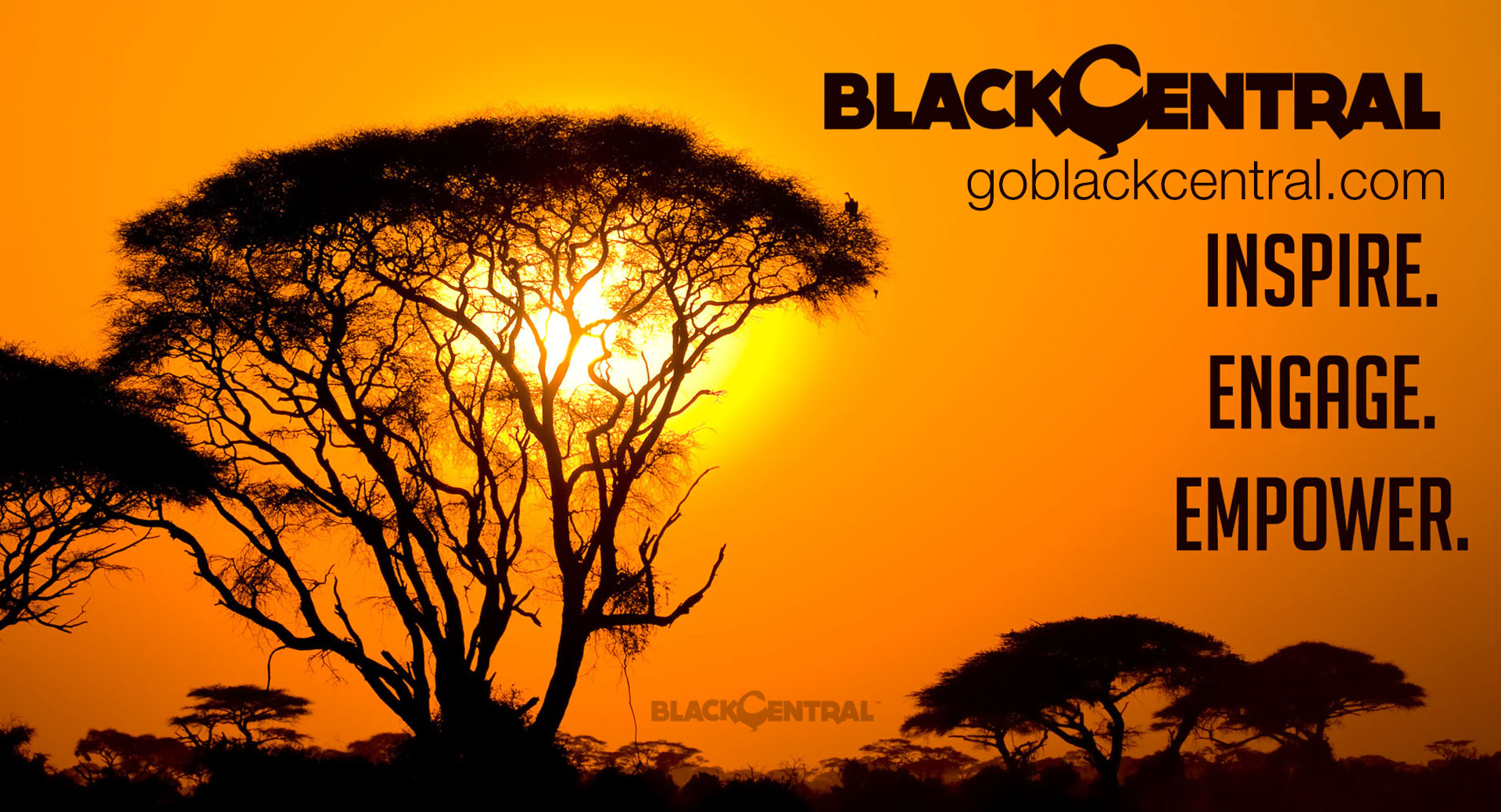 BLACK CENTRAL™